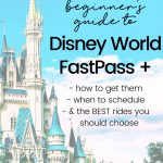 Disney World Fast Passes 101